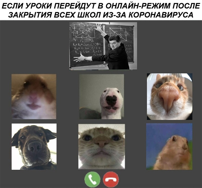 Школьные занятия через веб-камеру