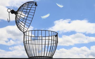9 признаков того, что на новой работе вам не место