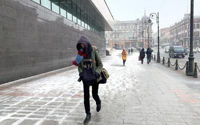 Полмиллиона жителей России остались без работы в пандемию