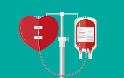Какие выплаты, льготы и выходные положены донорам крови