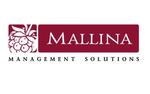 Компания MALLINA