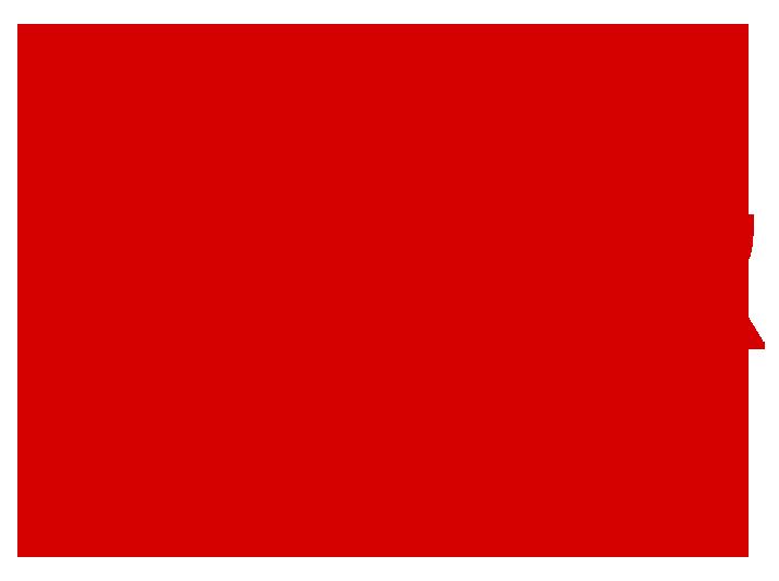 Ципа С. Н.