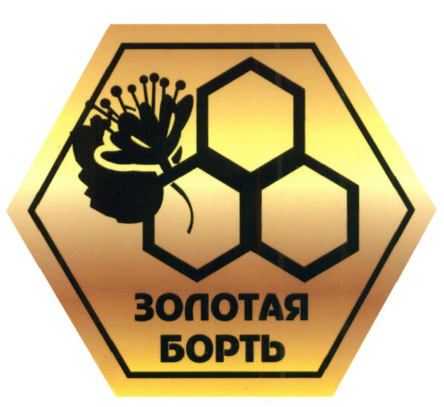 Золотая Борть