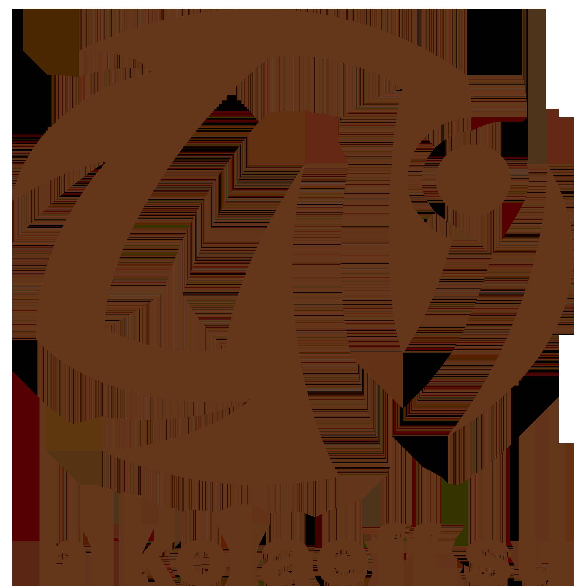 NikolaeffSu