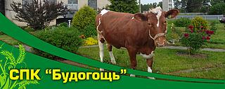 Работа в компании Будогощь СПК во Всеволожске