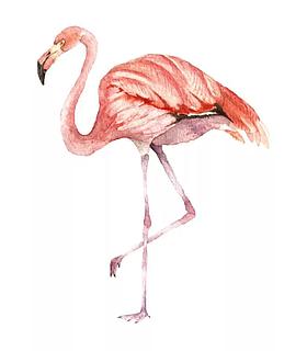 Салон красоты Фламинго